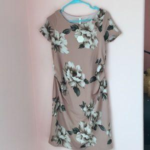 NWT pinkblush MATERNITY dress